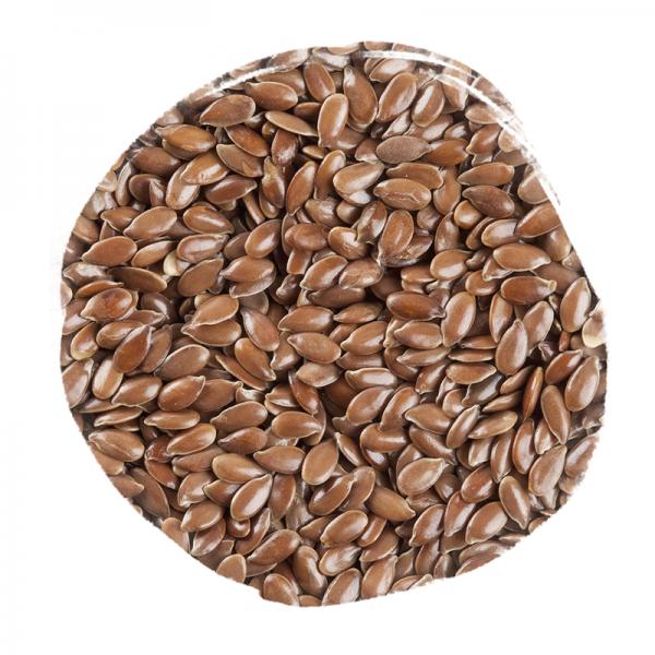 Graines de lin 600x600 - Graines de lin