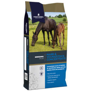 DH Breeding Plus Mare and Youngstock Concentrate NEW 3D 300x300 - Mare & Youngstock