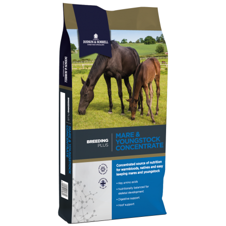 DH Breeding Plus Mare and Youngstock Concentrate NEW 3D - Mare & Youngstock