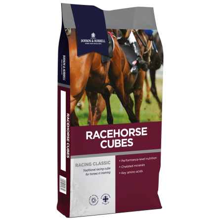D and H Racing20Classic20Racehorse20Cubes NEW - Racehorse Cubes